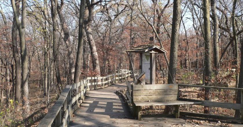 Fontenelle Forest Boardwalk Trails|©Ammodramus/WikiCommons