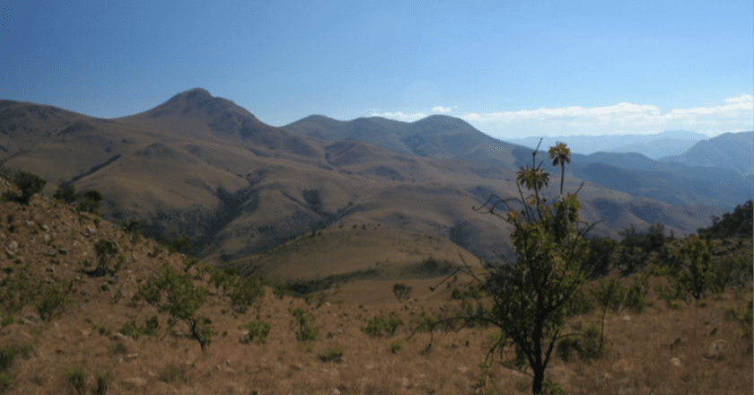 The Must-See Wildlife Reserves Of Swaziland