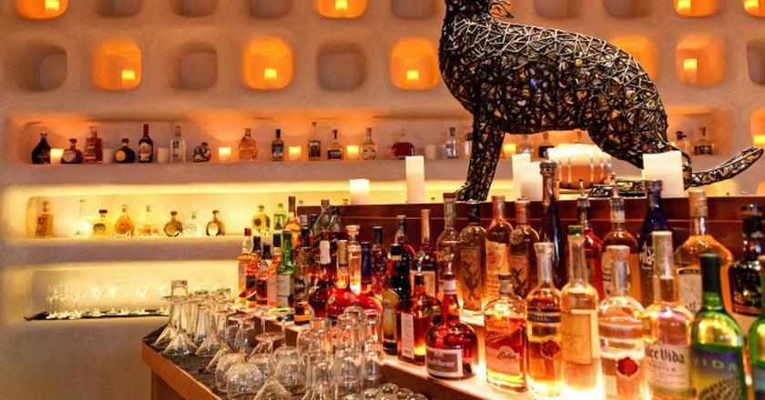 Kachina Coyote Bar | Courtesy of Kachina