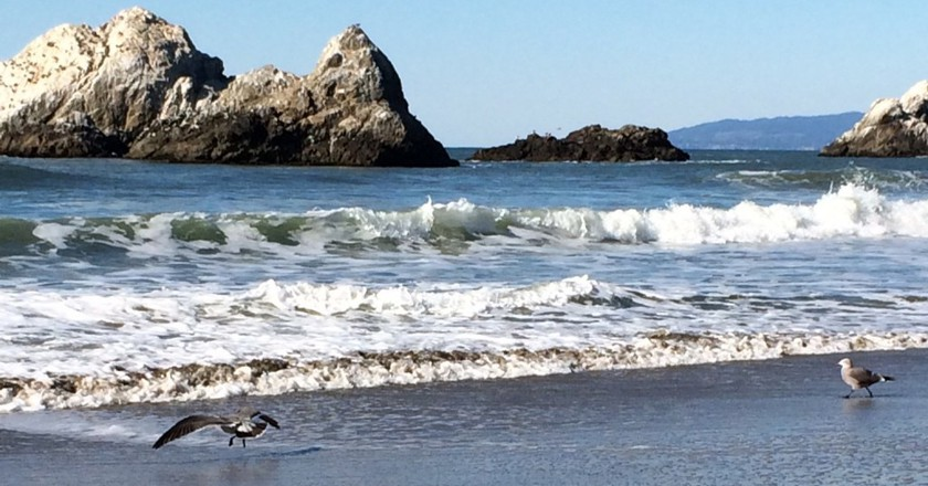 Enjoy The Water In The Bay Area Without Getting Wet