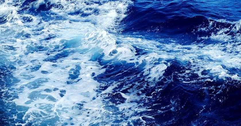 Celebrate The Deep Blue Sea At Ocean Film Fest