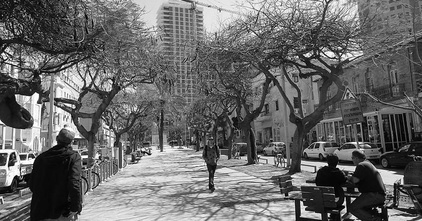 Rothschild Boulevard | Courtesy of Deror_Avi/WikiCommons