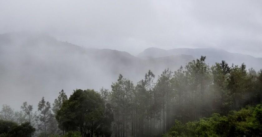 Hills of Tamil Nadu / Image courtesy Payal Adhikari