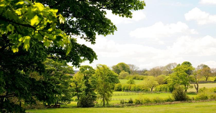 High Nature Value Farmland In England   © David Hill/WikiCommons