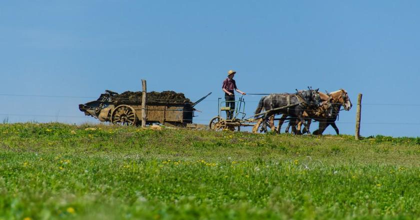 Amish Farming © likeaduck/ Flickr