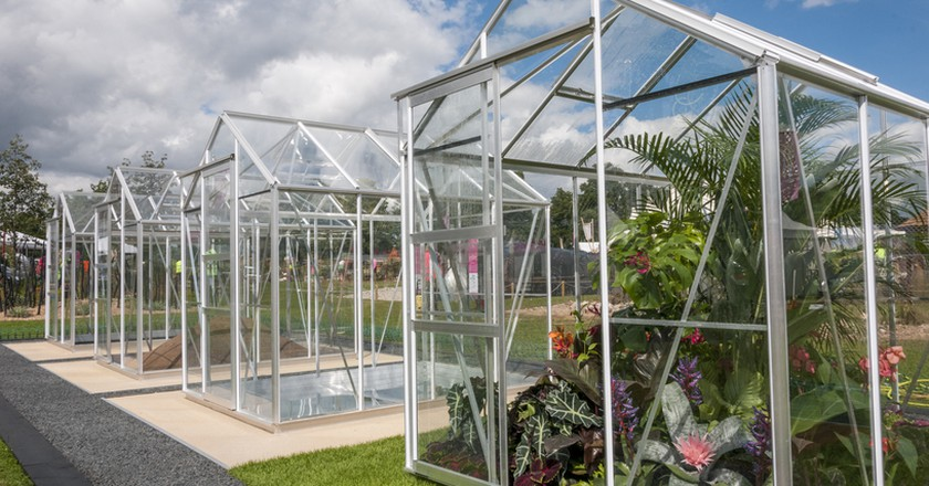 Greenhouse Effect. Designed by: Sheena Seeks. Sponsored by: The Greenhouse People. RHS Hampton Court Palace Flower Show 2016 | © Luke MacGregor/RHS