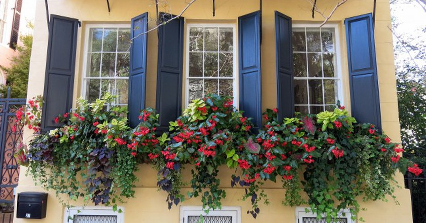 Window boxes in November, Charleston, SC | © Spencer Means/Flickr