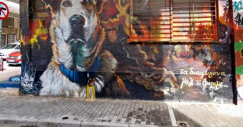 Portrait of Loukanikos, the riot dog  in Psirri © Dimitris Graffin/Flickr