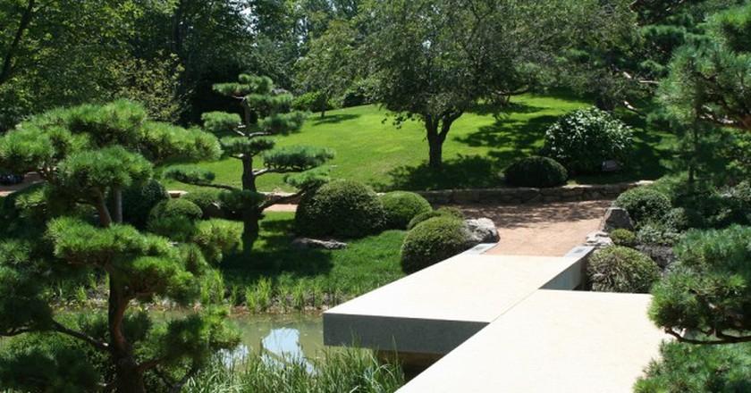 The Zig Zag bridge in the Chicago Botanic Garden's Japanese Garden.