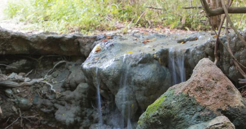 Bull Creek Greenbelt Park © BrandonLord/Flickr
