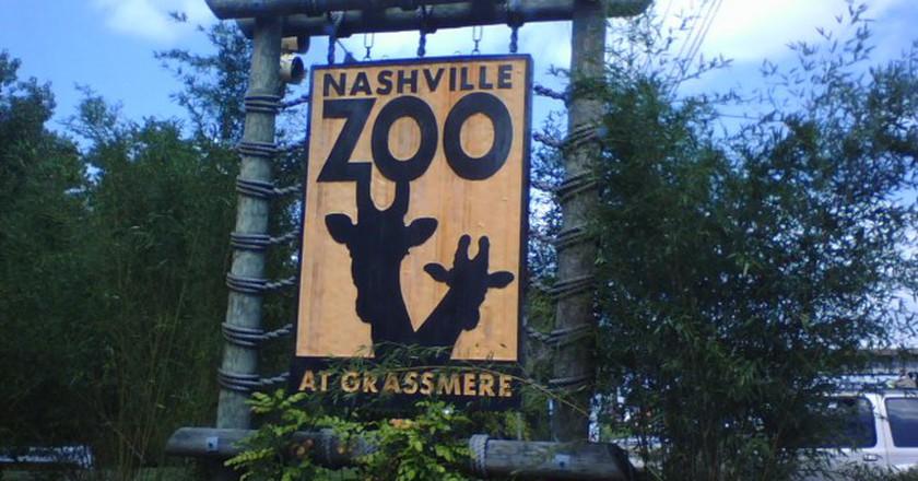 © Zoo, Stephen Yeargin/Flickr