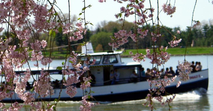 Tour Boat On The Potomac River   ©Alan Kotok/Flickr