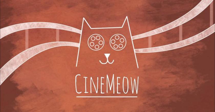 © Cinemeow
