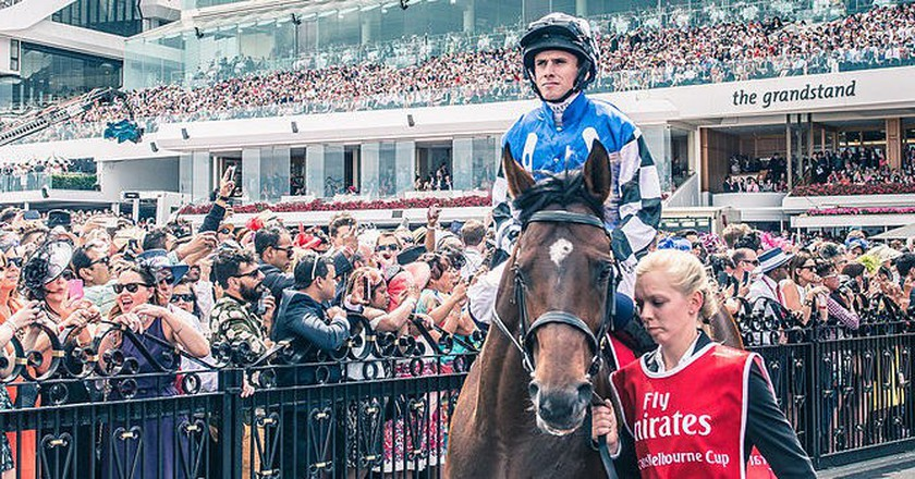 Protectionist before the 2014 Melbourne Cup | © Chris Phutully/WikiCommons