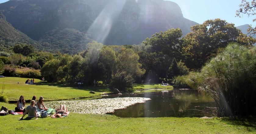 Picnicking at Kirstenbosch Botanical Garden © Flowcomm/Flickr