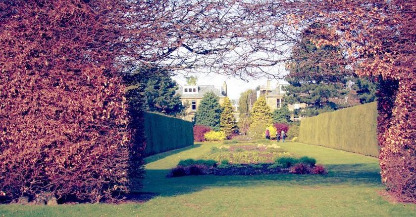 11 Reasons You Should Visit the Royal Botanic Garden Edinburgh