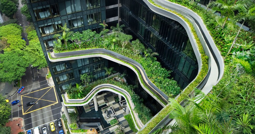 This Is Why Singapore Is the Greenest City in Asia