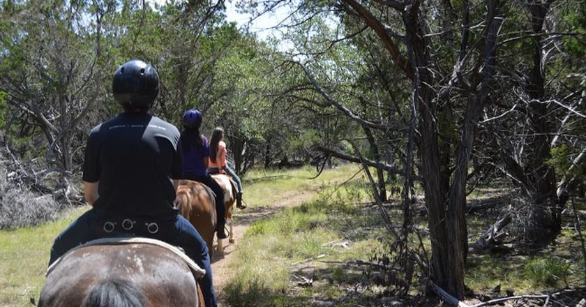 Texas Trail Riding   © skveerkamp/Flickr