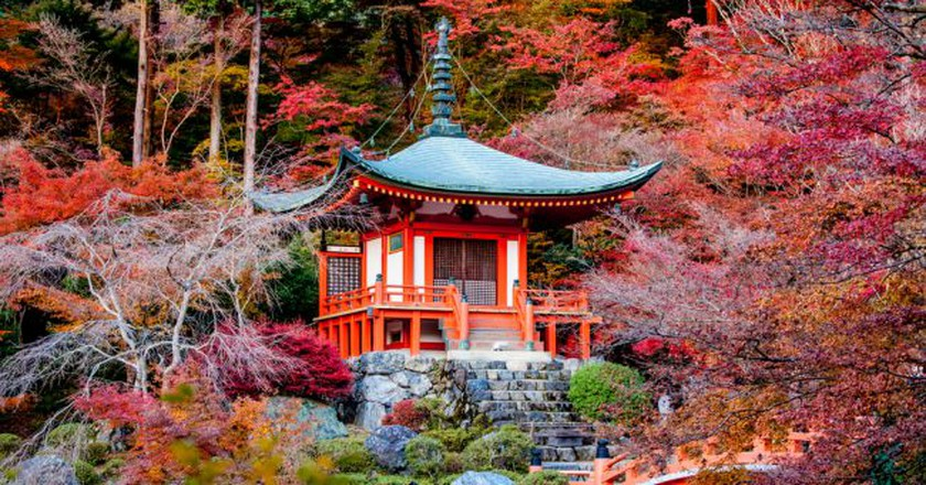 Autumn season,The leave change color of red in Tample japan   © Pigprox / Shutterstock