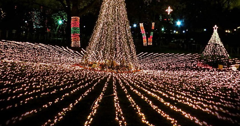 Christmas ZooLights at Lincoln Park Zoo  | © WikiCommons