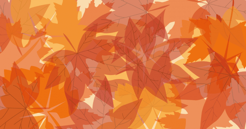 Vermont's Autumn & Winter Travel Guide (Infographic)
