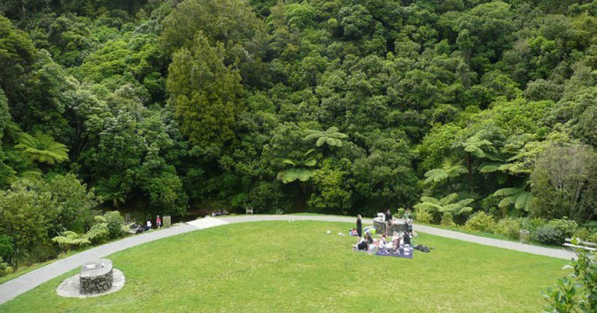 Picnic area, Otari-Wilton's Bush | © Brianna Laugher/Flickr