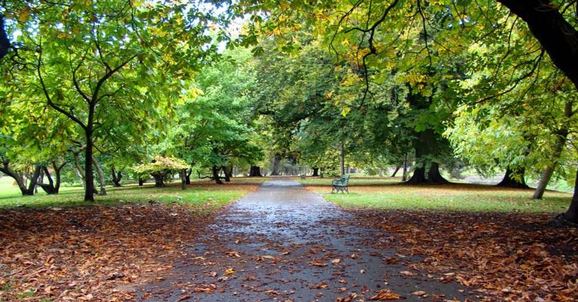 Bute Park in autumn|©Jon Candy/Flickr
