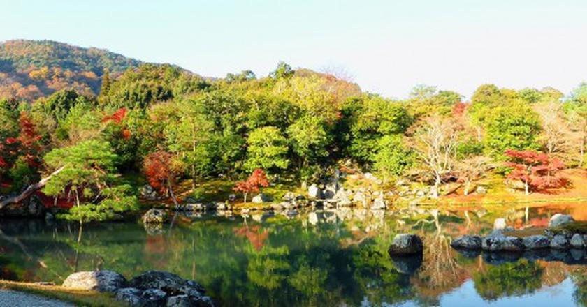Japanese Stroll Garden at Tenryu-ji Temple  © Tetsuhiro Terada Flickr