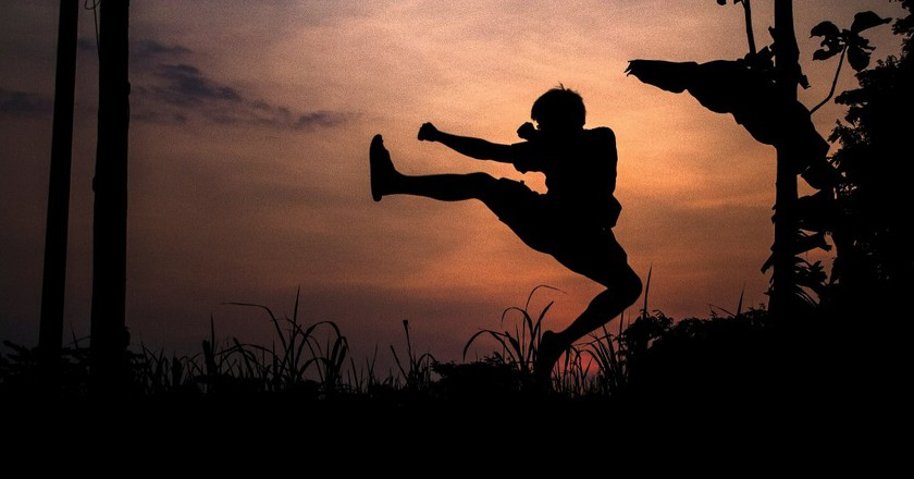 "<a href=""https://www.flickr.com/photos/timothysubroto/14484052464/"">Kung fu pose 