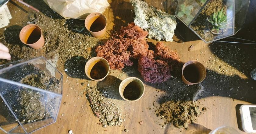 Indian Spices | © via Unsplash