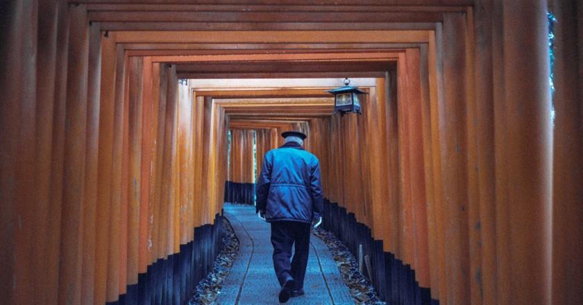 Fushimi Inari Taisha Shrine| © Agastya Alfath /  Flickr