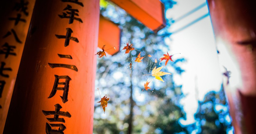 Reasons to Visit Kyoto  ©  Mian  Flickr