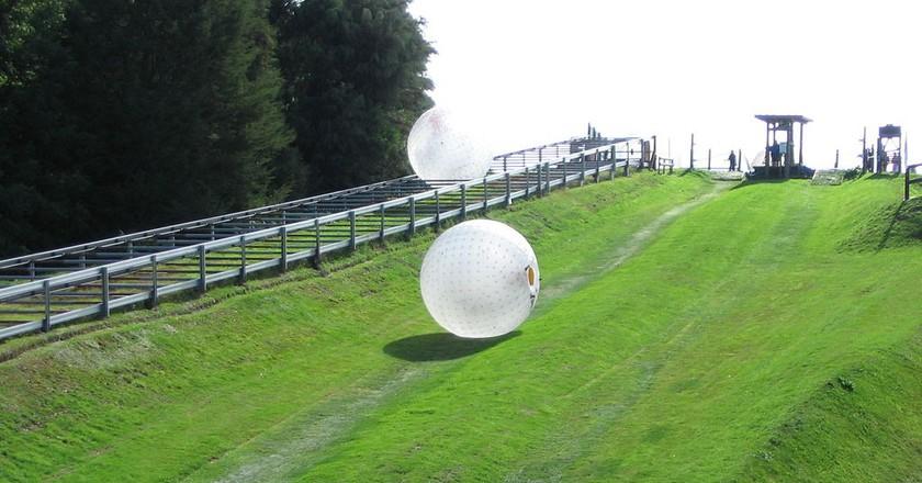 Zorbing in Rotorua | © Wikimedia Commons