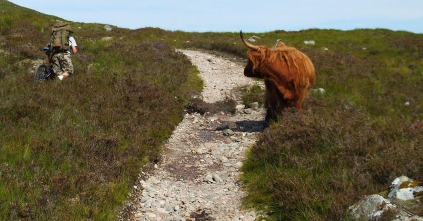 Blocked Path...   © Garry Burns/Flickr