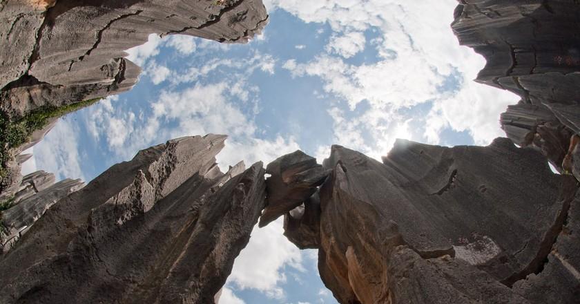 Stone Forest|©Mills Baker/Flickr