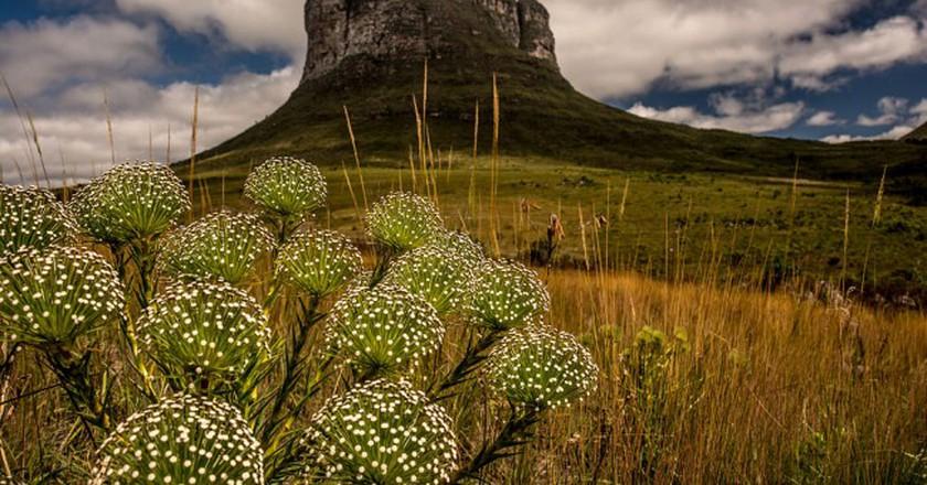 Morrão - Parque Nacional da Chapada Diamantina   © Jeilsonandrade / WikiCommons