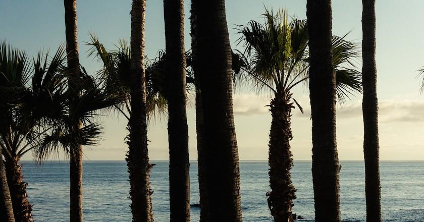 Laguna Beach | © m01229 / Flickr