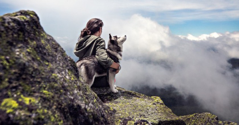 Hiking with a husky   © Pexels