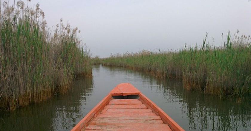 Shadegan Lagoon | © Ehsan Doostmohammadi / Wikimedia Commons