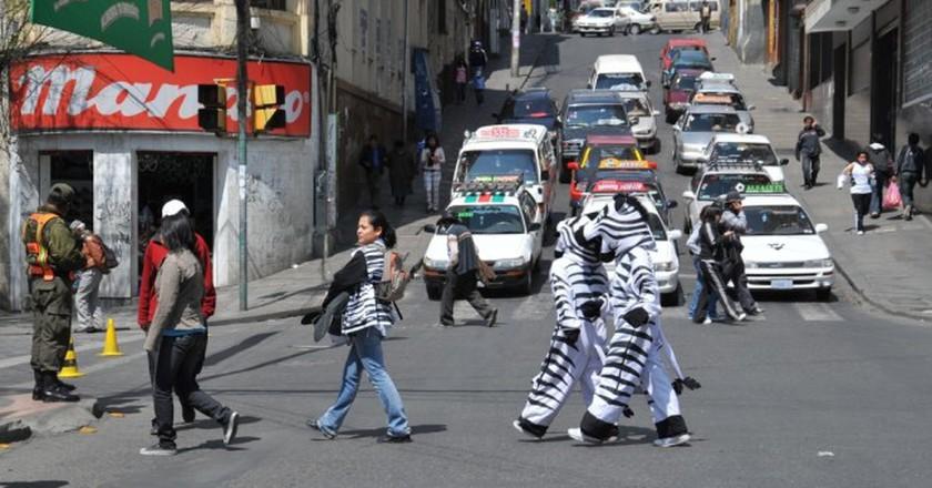 Bolivia zebras © Free Wind 2014 / Shutterstock.com