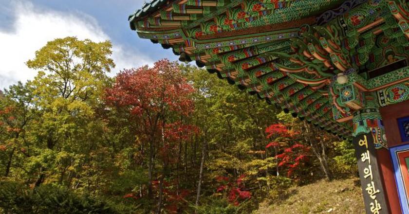 Temple in Seoraksan National Park | © Chris Campbell / Flickr