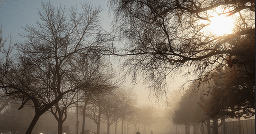 Riders in the mist | © Gary J. Wood/ Flickr