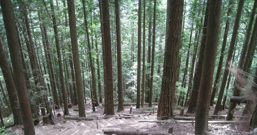 """<a href=""""https://www.flickr.com/photos/cpirate/3175352413/"""">Grouse Grind 