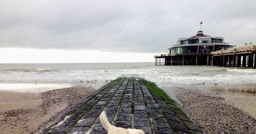 Posing on the breakwater in seaside town Blankenberge   © Steffi De Meyer
