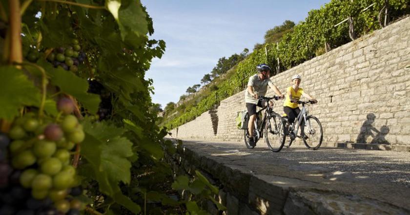 Explore Baden-Baden's Rheinradweg Cycling Route