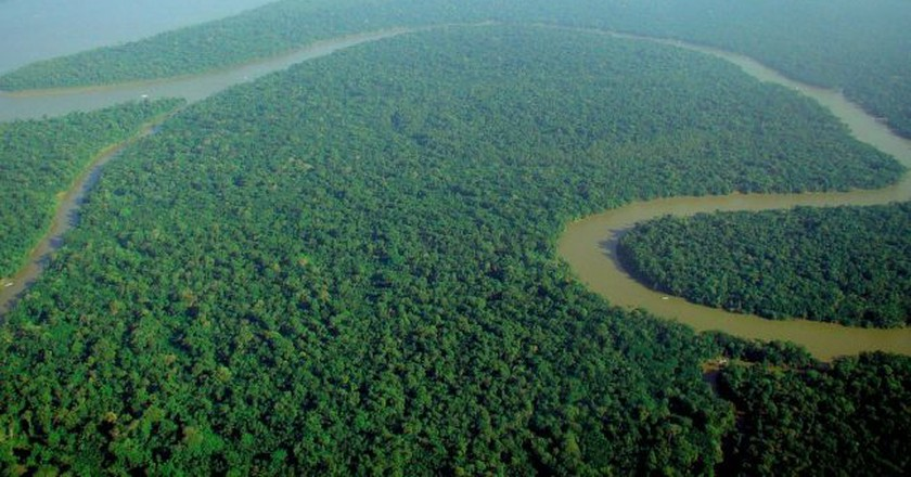 Amazon rainforest | © lubasi/WikiCommons