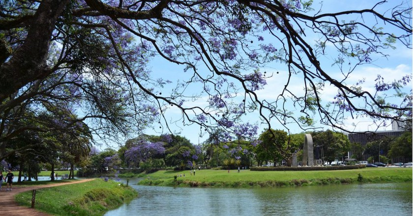A Brief History of Ibirapuera Park