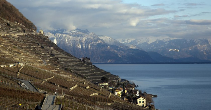 Here's Why You'll Fall in Love With Switzerland's Lavaux Vineyards