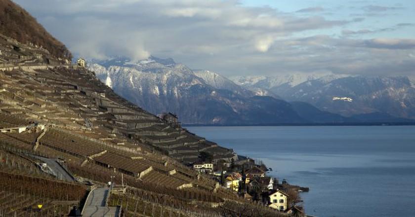 The Lavaux vineyards | © Kosala Bandara/Flickr