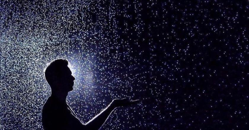 'Rain Room'   © designmilk/Flickr